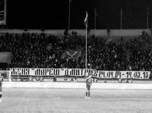 Ландскрона: Фанат Зенита убит кавказским спортсменом